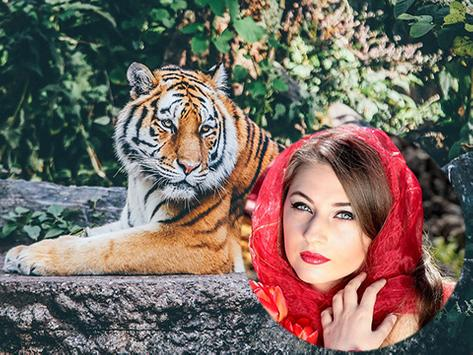 Wild Animal Photo Frames apk screenshot