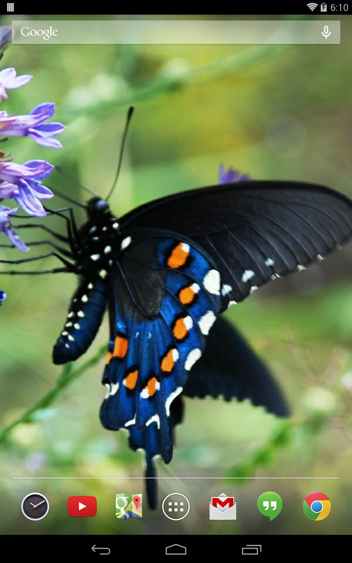 Butterflies Live Wallpaper for Android - APK Download
