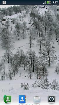 Winter Wonderland Wallpaper poster