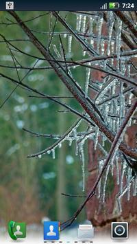 Winter Wonderland Wallpaper apk screenshot