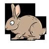 AnimalColor icon