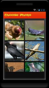 Phoenix Picture Puzzle apk screenshot