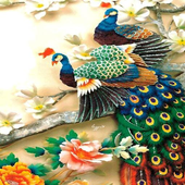 ColorFul Peacock LiveWallpaper icon