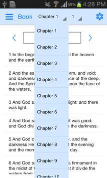Holy Bible Offline screenshot 19