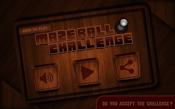 Ball Pot Challenge - Maze poster