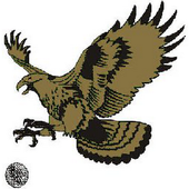 Golden Hawk icon