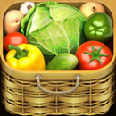Vegetables Introduction APK