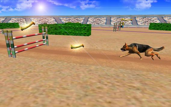 Super Dog Jump Crazy Racing 3D 2017 poster