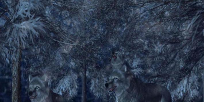 Wolves 3D Live Wallpaper poster