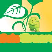 Solo Green icon