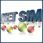 Net SIM English Version icon