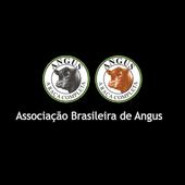 Angus App icon