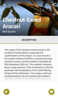Birds of Brazil apk screenshot