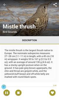Identify Birds By Sound apk screenshot