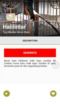 Top Master Murai Batu apk screenshot