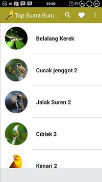 Top Suara Burung Offline screenshot 1