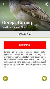 Top Suara Burung Offline screenshot 6