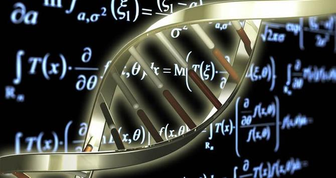Biology Encyclopedia apk screenshot