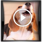 Sonido  De Perros icon