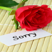 Sorry greeting cards free apk download free social app for android sorry greeting cards free apk m4hsunfo