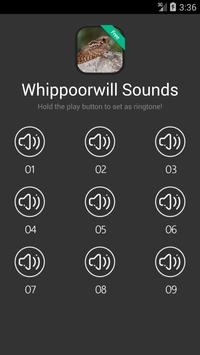 Whip-poor-will Calls & Sounds poster