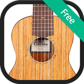 Acoustic Guitar Cover Songs icon