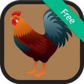Chicken Sounds and Ringtones icon