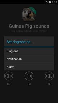 Guinea Pig Sounds screenshot 1