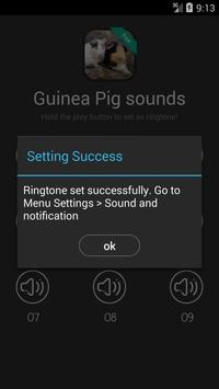 Guinea Pig Sounds apk screenshot