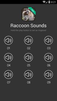 Raccoon Sounds and Ringtones poster