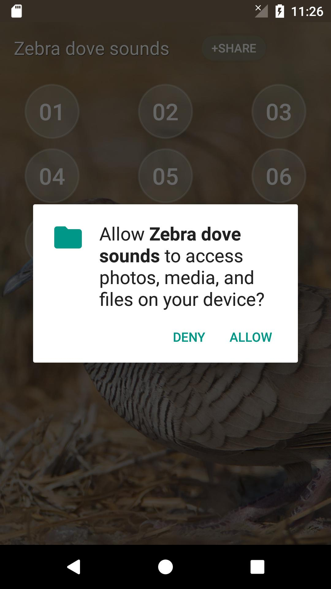 Zebra dove Sound for Android - APK Download