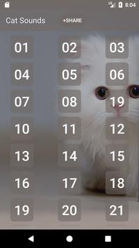 Cat Sounds and Ringtone poster