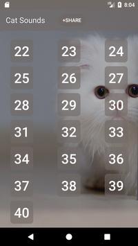 Cat Sounds and Ringtone apk screenshot