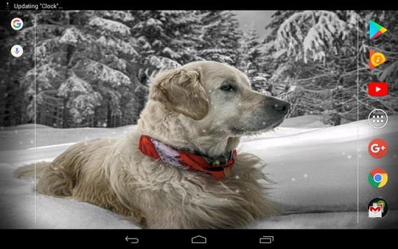 Cute winter dogs screenshot 7