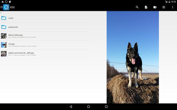 EDS Lite screenshot 5