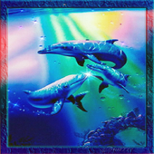 Sparkle Dolphins LWP icon