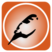 Sparrow SMS Messaging icon