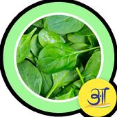 Tasty Palak Spinach Recipes icon