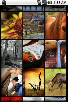 Picture Puzzle Of The Day apk screenshot
