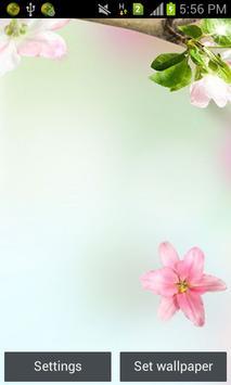 Flowers Live wallpaper poster
