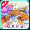 KOI Fish Wonder icon