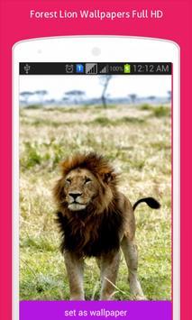 Lion Wallpapers HD screenshot 2