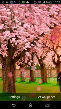Beautiful Sakura LWP apk screenshot