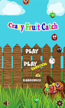 Crazy Fruit Catch poster