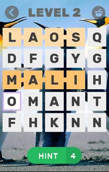 Word search puzzle country screenshot 1