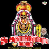 Om Arunachalaeswaraya Namaha icon