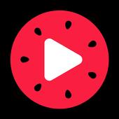 西瓜视频 icon