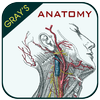 Gray's Anatomy - Anatomy Atlas 2020 आइकन