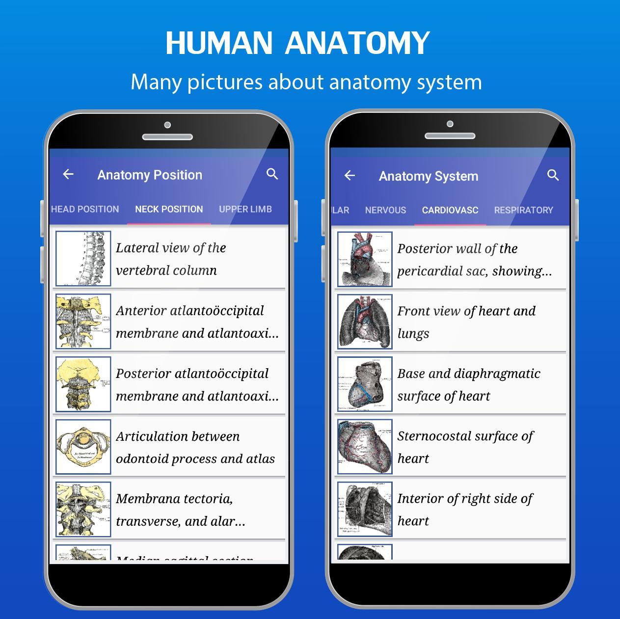 Gray's Anatomy - Anatomy Atlas (Offline) for Android - APK