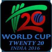 Twenty 20 Cricket World Cup icon